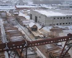 Производство оцилиндрованного бревна в Омске